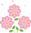 gh_flower